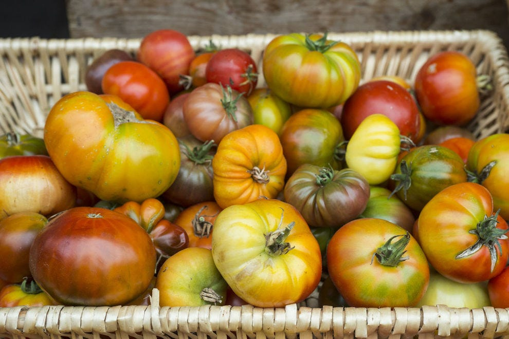 Everything you want to know about heirloom tomatoes
