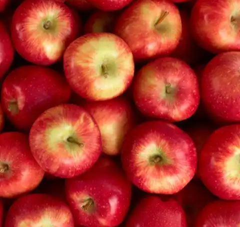 Top 11 healthiest fruits on Earth and there health benefits